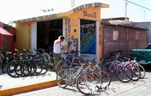 Bicycle Rentals